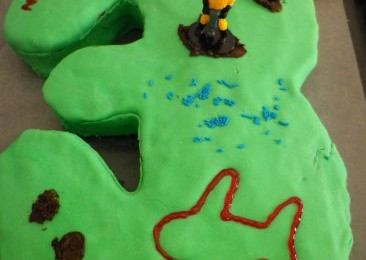 I bake party cakes