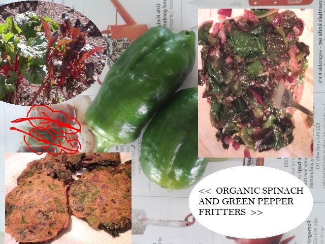 organic spinach and green pepper fritters